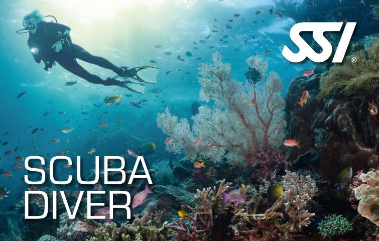 Bild von Scuba Diver