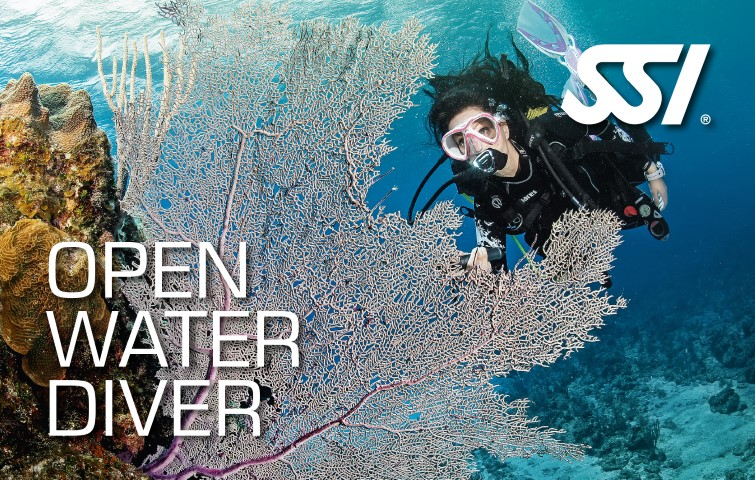 Picture of Junior Open Water Diver JOWD